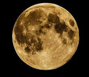 lune-305