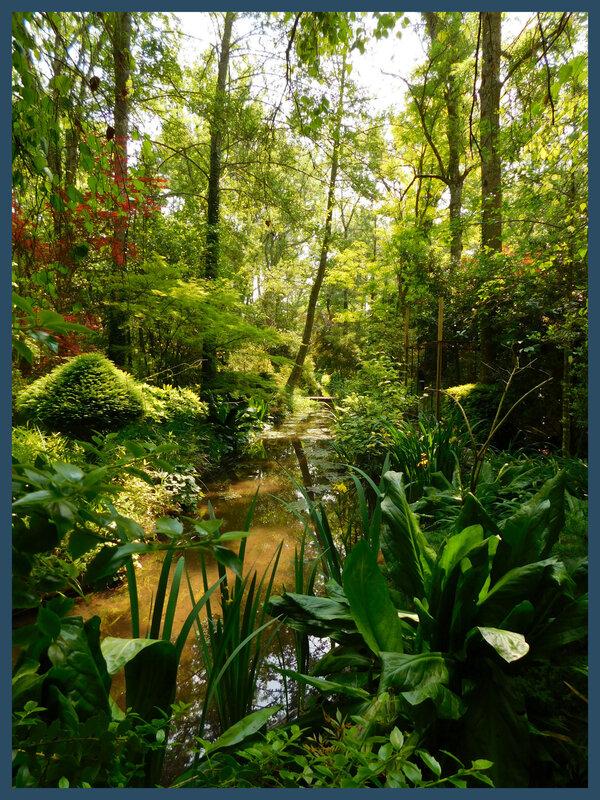Arboretum des prés de Culand26