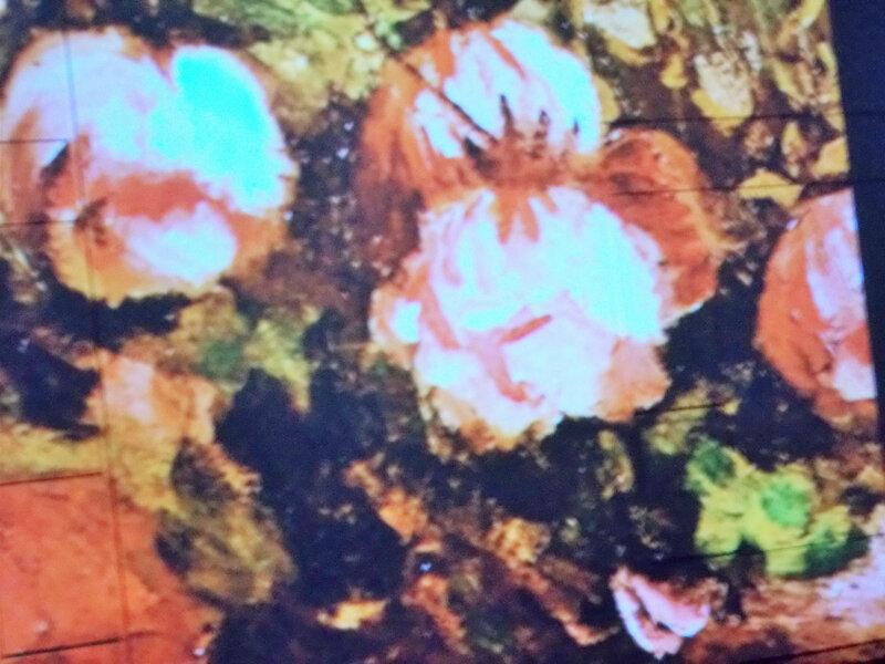 vangogh alive detail tableau en grand ecran