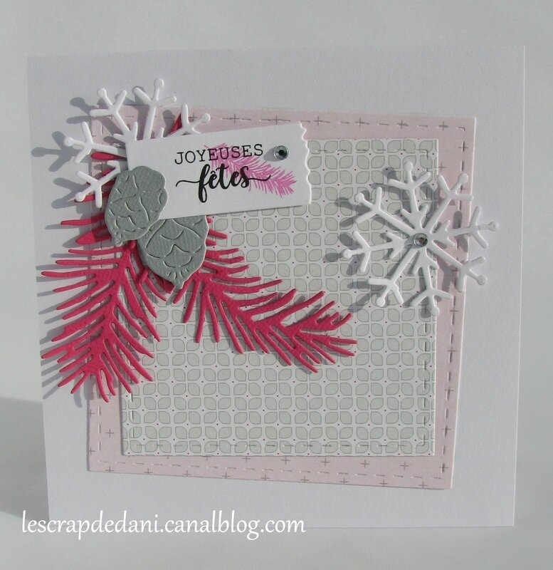dani carte combo rose f-gris-blanc2