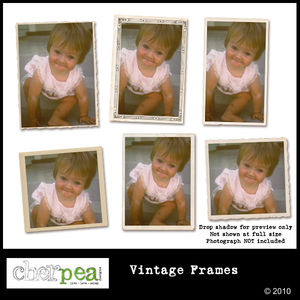 cpd_vintage_frames_600Preview