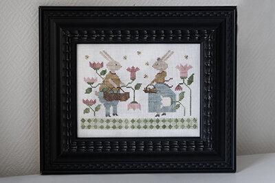 histoire de lapins web
