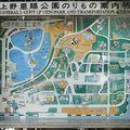 Tokyo : parc Ueno