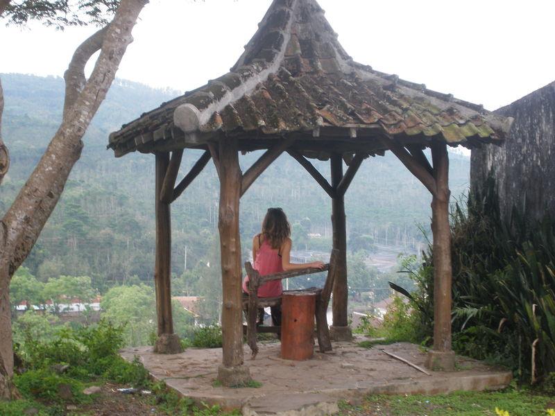 kawa Ijen,troncs calcinés par vapeurs de soufre
