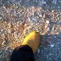 Amundsen's foot
