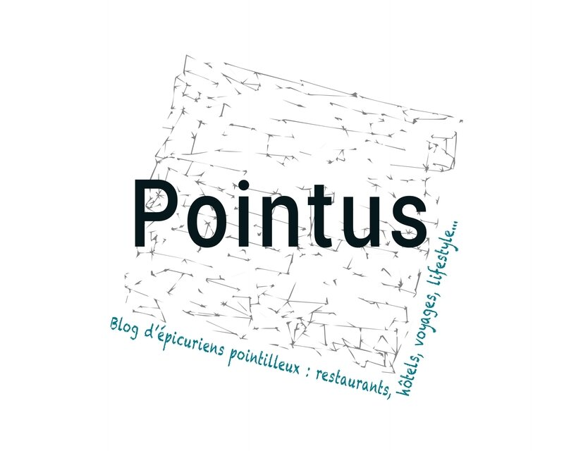 Pointus-blog-