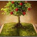 Occasion divine pour connaître santé, amour, chance, argent, réussite