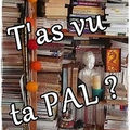 T'as vu ta pal ?