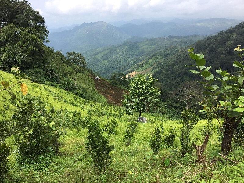 birmanie 05