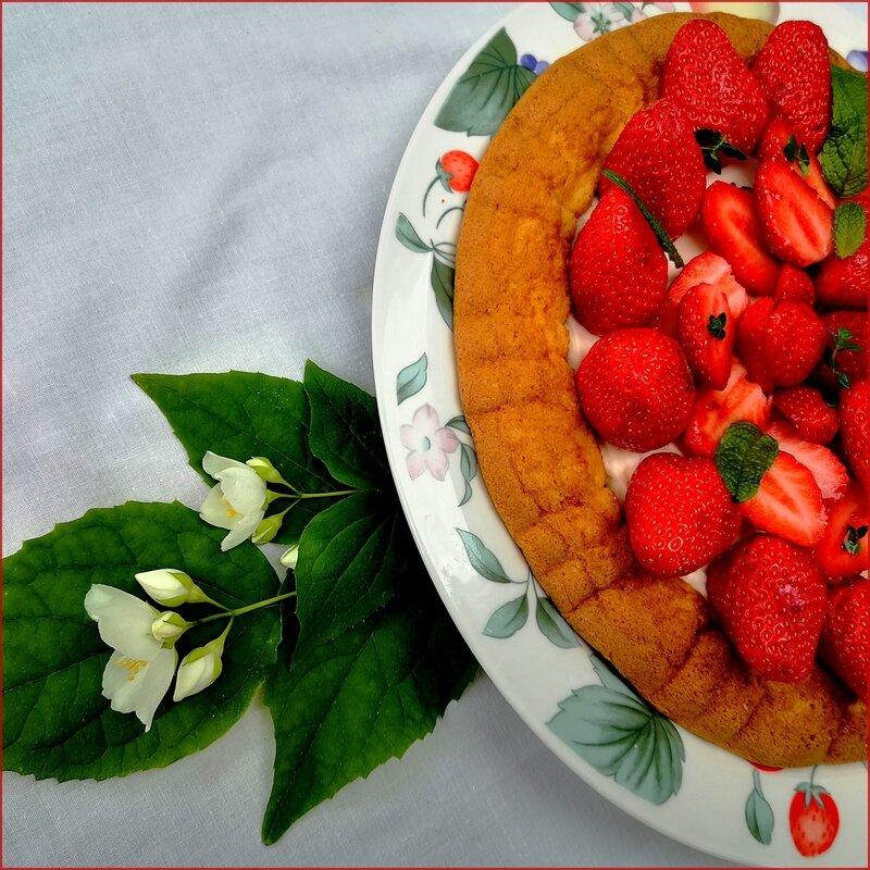 fraises_1