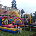 Animation et organisation des fêtes a casablanca 0656989026