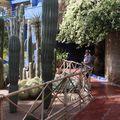 Les Jardins de Majorel (1)