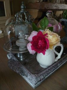 Roses & cloches