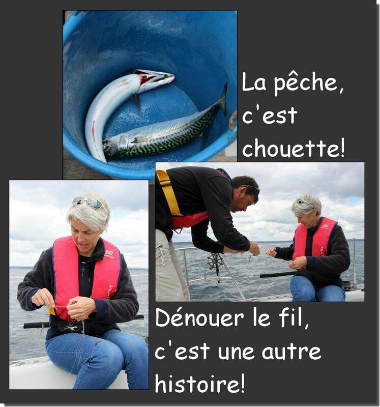 Planche pêche (Large)