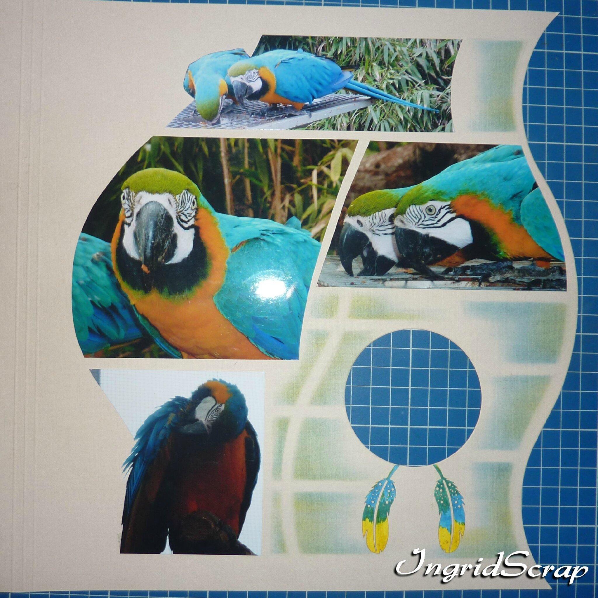 Zoo Cerza 8-12