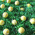 Martin et balles de tennis 006