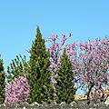 nature-et-jardin (55)