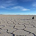 Salar de Uyuni - Bolivia - 13 août 2014