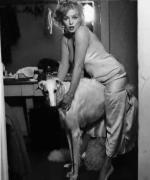 1958-05-27-by_richard_avedon-for_LIFE-mm_as_jean_harlow-backstage-021-1