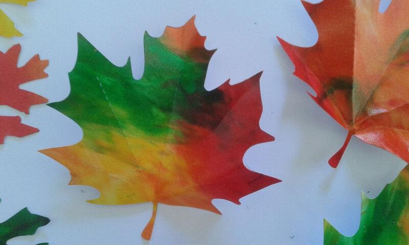 105_Arbres Automne_Feu d'automne sur ciel gris (45)