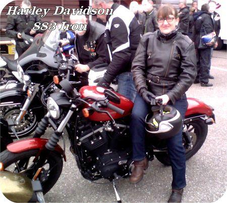 Essais_Harley_Davidson1