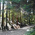 Côteaux direction le fort Belin Salins-les-Bains Jura