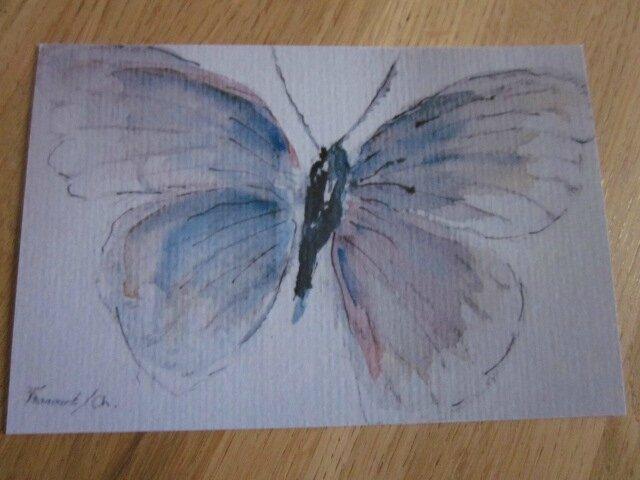 Insecte VI - Le Papillon (2)