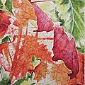 Transparence d'automne
