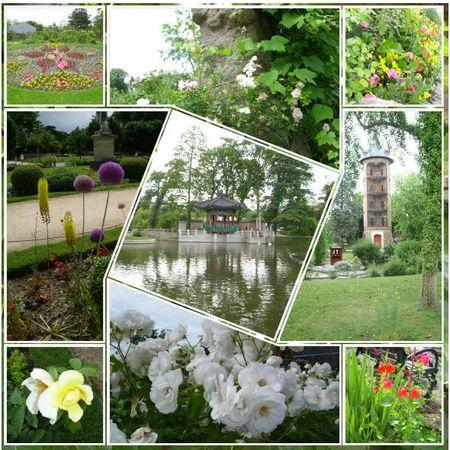 jardin_accl_1