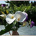 3/ bouquet de fleurs- arum