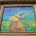 exposition a ciron indre a partir du 15 aout 2012 au 28 aout 2012 - le cerf - faune en brenne
