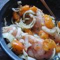 Blancs de poulets grillés aux abricots