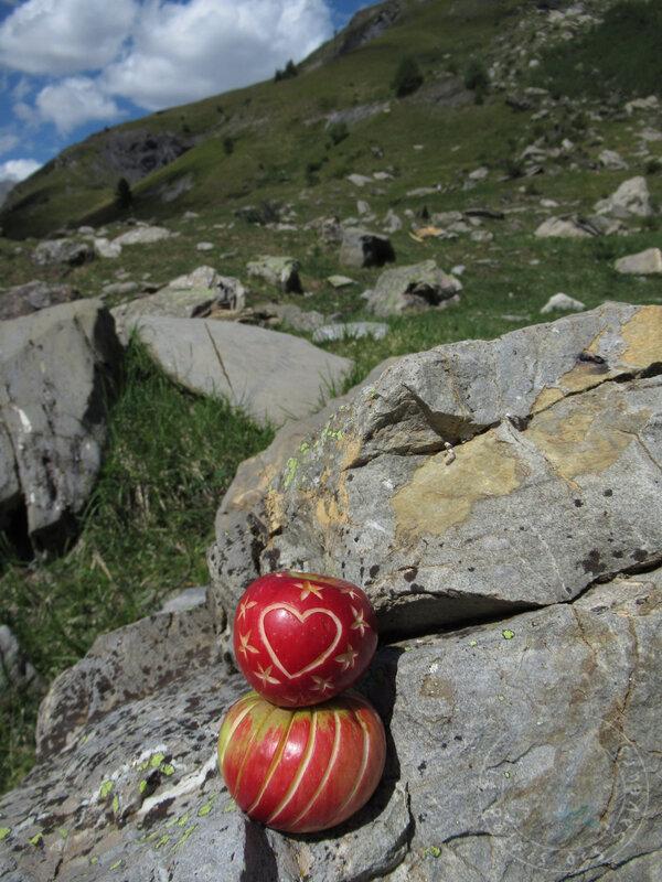 Pomme à la montagne #4