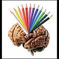 Mind map - cartographie de l'esprit - plan - problèmes à résoudre - résolutions - idées - schéma - organisation