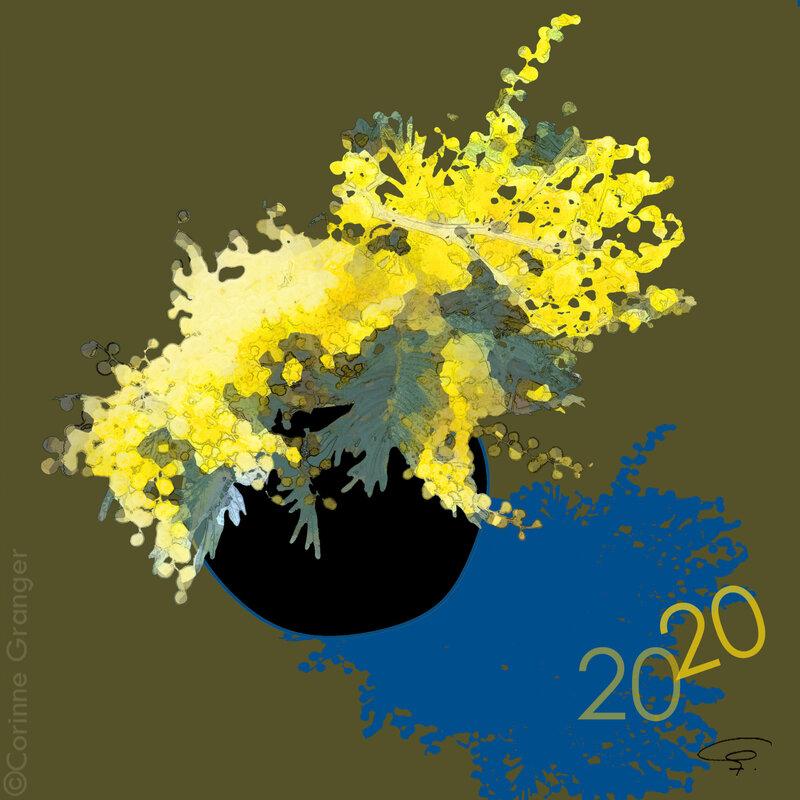 ©mimosa cv 2020-3