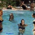 la piscine de IR