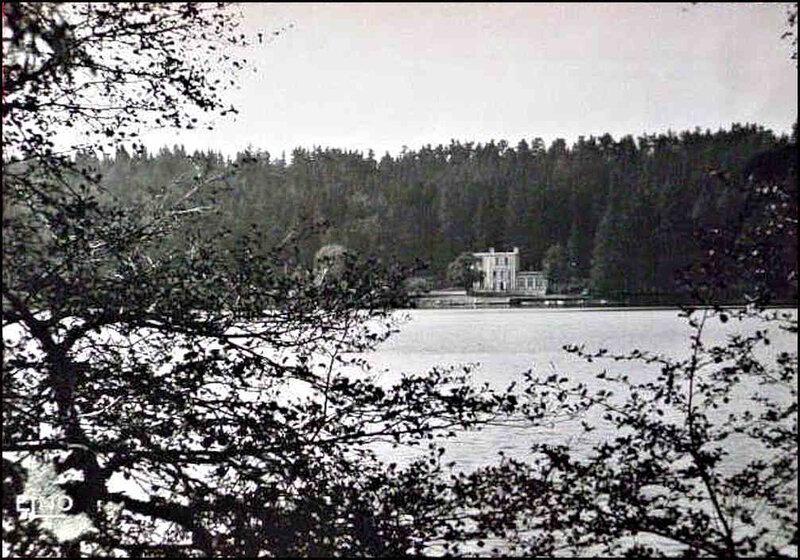 62-43-Lac du Bouchet-Hotel-arbres-473-1