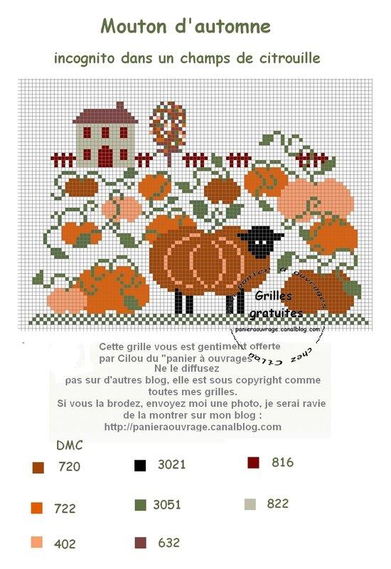 mouton d'automne incognito ds champ citrouille
