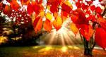 autumn-landscape-5_00450637