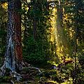 La fête de la nature découvrons les richesses de la biodiversité