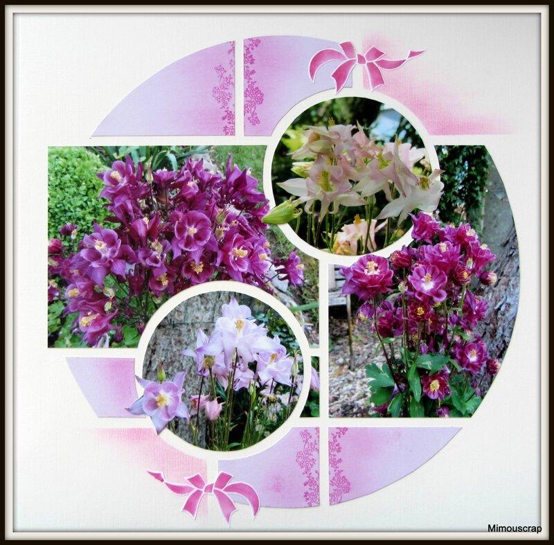 Jardin 2014 041