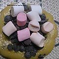 Cookies marshmallow-chocolat