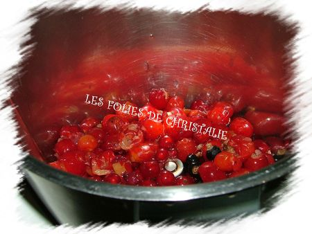 Coulis 3 fruits 1