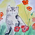 Chat dans les coquelicots - cat in the poppies