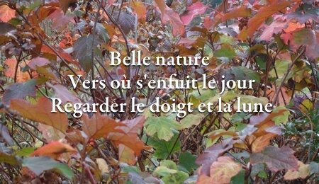 bellenature