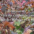 Belle nature