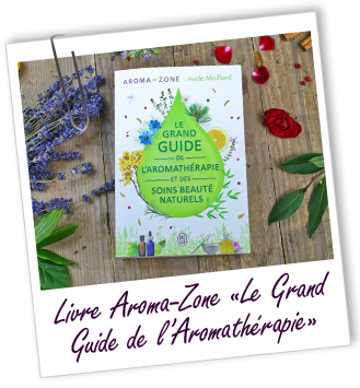 FT_trombone_MS_livre_grand_guide_jailu