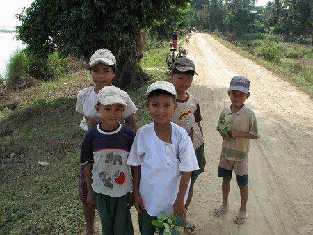 Birmanes__Birmans__48_
