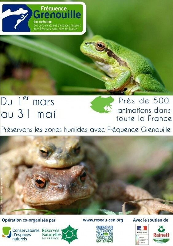 Fréquence-Grenouille