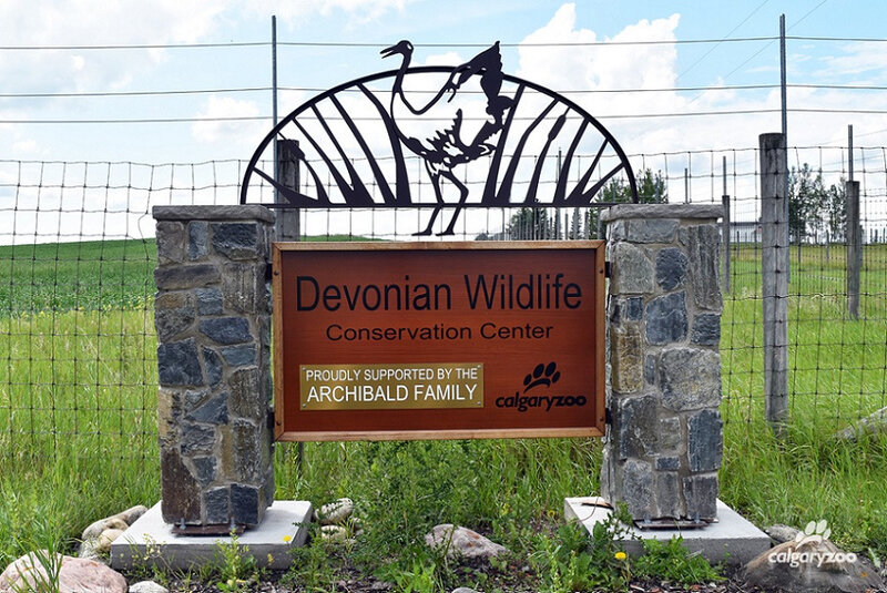 DEVONIAN WILDLIFE CONSERVATION CENTER